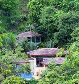 1.3 ACRES – 3 Bedroom Tropical Style Home With Central Location, Pool, And All Year Creek!!!