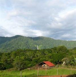 131 ACRES – Functioning Farm With 3 Homes, Rivers, Waterfalls And Amazing Views!!!