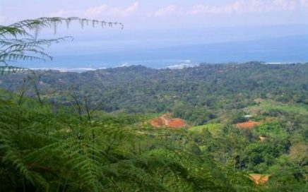 483 ACRES – Beautiful Ocean View Ranch With A 2 Bedroom Home, Rivers, Ocean View, Jungle!!!