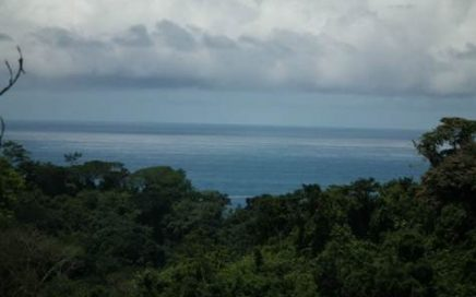 37 ACRES – 10 Segregated Lots With Roads, Building Sites, Ocean Views, Creeks, Power, and Water!!!!