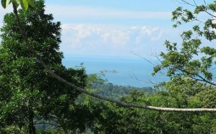 18 ACRES – Ocean View Property With Multiple Building Sites And 2 Creeks!!!