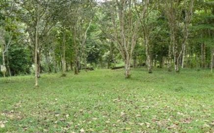 8.5 ACRES – Gorgeous Property 5 min From Town w/ River, Trees, Spring! Estate or Small
