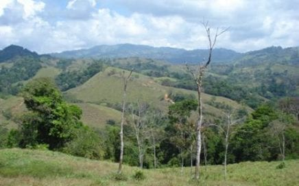 63 ACRES – Beautiful farm in the mountains, many buildable areas, 1 km of river frontage!!!
