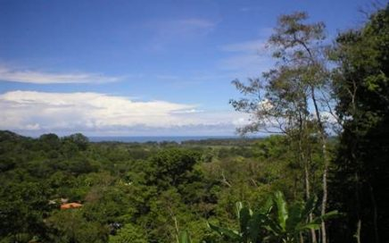 1.3 ACRES – Ocean View Lot With Great Access And A Great Price!!!