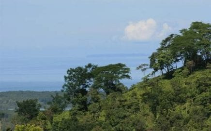 3 ACRES – Amazing Ocean Views w/ Huge Building Site And Open, Usable Acreage!!