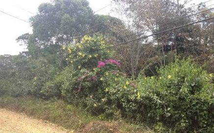 1/4 ACRE – Beautiful Residential Lot 1 Km Fron Center of San Isidro!!!!!!!!!