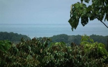 3 ACRES – Ocean View Property With A Creek In Gated Community At A Great Price!!