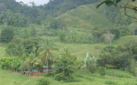 348 ACRES – Amazing Ranch With 2 KMS Of River Frontage And Waterfalls, Half Usable And Half Jungle!!