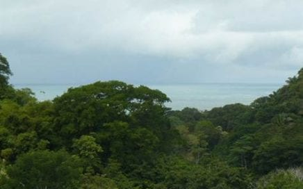 1.5 ACRES – 360 Degree Ocean And Mountain View Property Just Minutes From The Beach!!