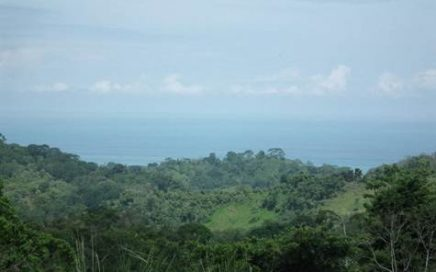 1 ACRE – Large Building Site With Ocean View At A Great Price!!