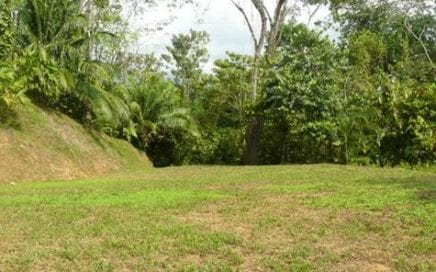 1/2 ACRE – Affordable Lot With Great Access And Nice Jungle Setting!!