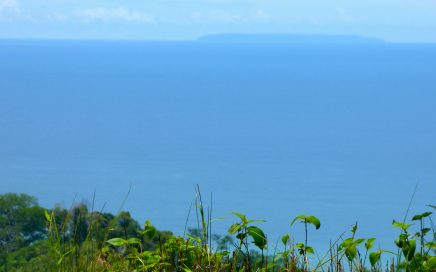 7 ACRES – Beautiful Ocean View Property With Large Building Site!!!