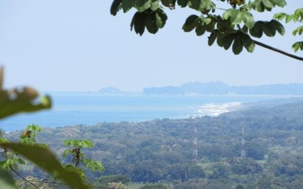 1.2 ACRES – Amazing Ocean View in a Jungle Setting with Great Access!!!