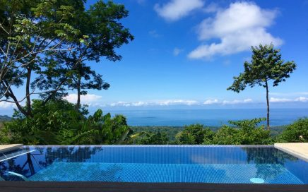 0.6 ACRES – 2 Bedroom Brand New Whales Tale Ocean View Home With Pool!!!