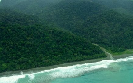 348 ACRES – Carate Rainforest Estate Including 1.95 kms Of Beachfront!!!