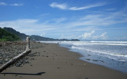 1 ACRE – The Last Beachfront Property In Playa Dominical!!!!