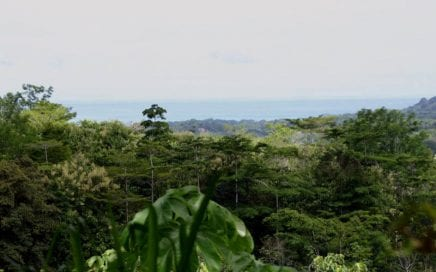 44 ACRES – Very Usable Acreage With Ocean View And River Frontage Only 10 Min From Town!!!!