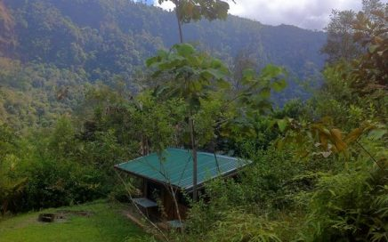 0.78 ACRES – 1 Bedroom Cabin With Several More Building Sites And Waterfall Access!!!!