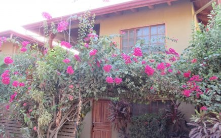 0.05 ACRES – 3 Bedroom Home With Pool Walking Distance To The Beach!!  Great Rental History!!!