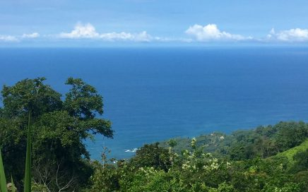 3.12 ACRES – Amazing Ocean View Lot In Costa Verde Estates Gated Community!!!
