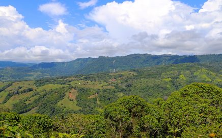 275 ACRES – Large Mountaintop Property With Diamante Waterfall Views!!!