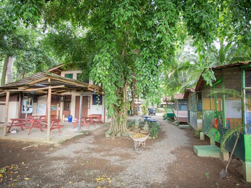 0 23 Acres Spanish School With Cabinas On Main Street