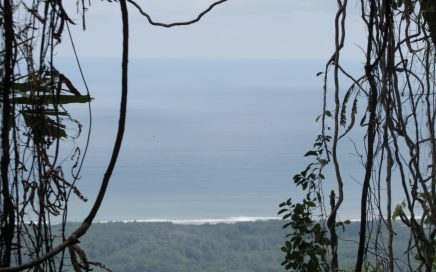 3 ACRES – Very Usable Land With Great Mountain and Ocean Views!!!
