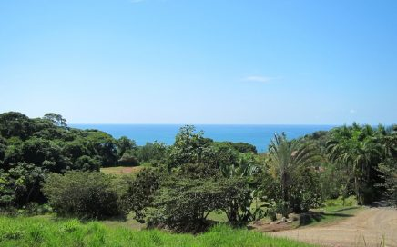 1.34 ACRES – Affordable Ocean View Lot In Gated Community 2 Min From The Beach!!!