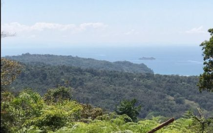 7.33 ACRES – 4 Ocean View Building Sites, 1 Mnt View Site, Plus River And Waterfalls!!!