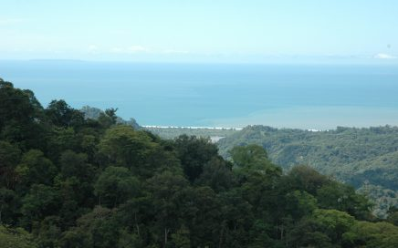 8 ACRES – Spectacular Ocean View Property – With 4 Buidling Lots!!!