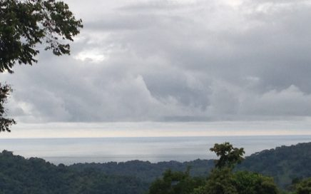 18 ACRES – Ocean View Acreage With Multiple Building Sites And All Year Creek!!!