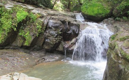 9 ACRES – Beautiful Bamboo Home in the Mountains, 2 min walk to Private Waterfall!!