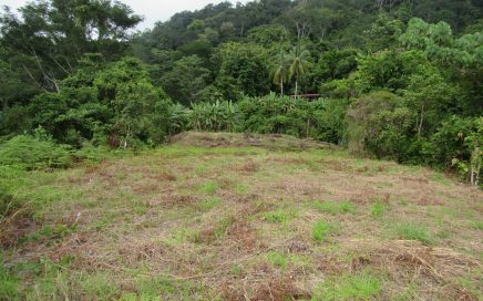 2.9 ACRES – Ocean View Lot With Large Building Site And Creek!!