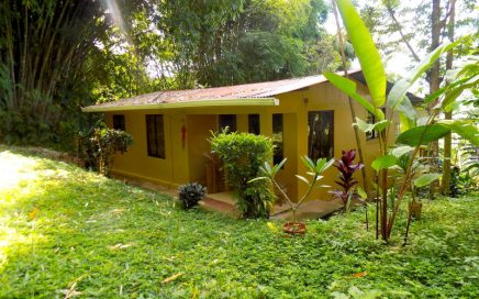 4.8 ACRES – 2 Bedroom Home On Ocean View Acreage!!!