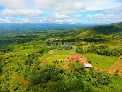260 ACRES - 3 Bedroom Home On Working Farm!