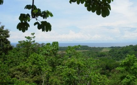 4 ACRES – Private End oF The Road Lot With Great Ocean View At A Great Price!!!