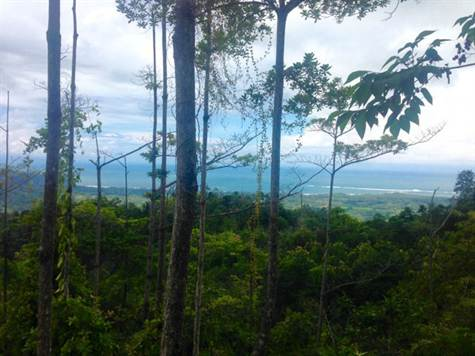 Panoramic Ocean Views Multiple Building Zones