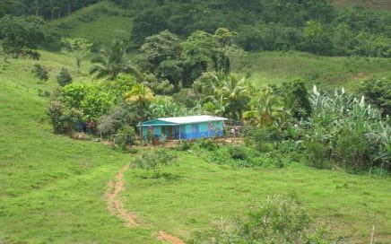 336 ACRES – Mix Of Open Pasture And Jungle With Rivers And Great Elevation!!!