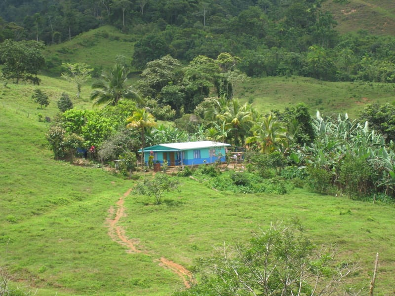 336 ACRES - Mix Of Open Pasture And Jungle With Rivers And Great Elevation!!!