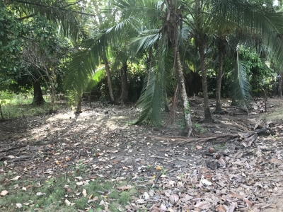 0.08 ACRES - Residential Or Commercial Lot 1 Min Walk From The Beach!!!