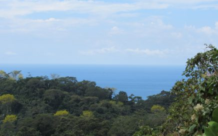 3.9 ACRES –  4 Sunset Ocean View Building Sites, River And Waterfall Access, Legal Water Concession!!!!!