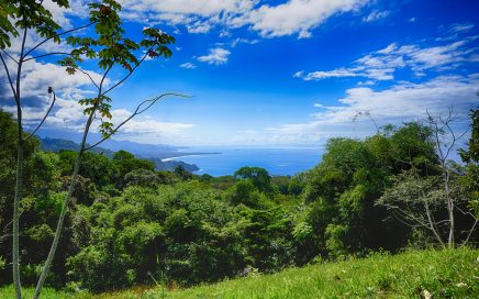 1.74 ACRES – Whales Tale Ocean View Lot Located In The Exclusive Escaleras Mountains!!!!
