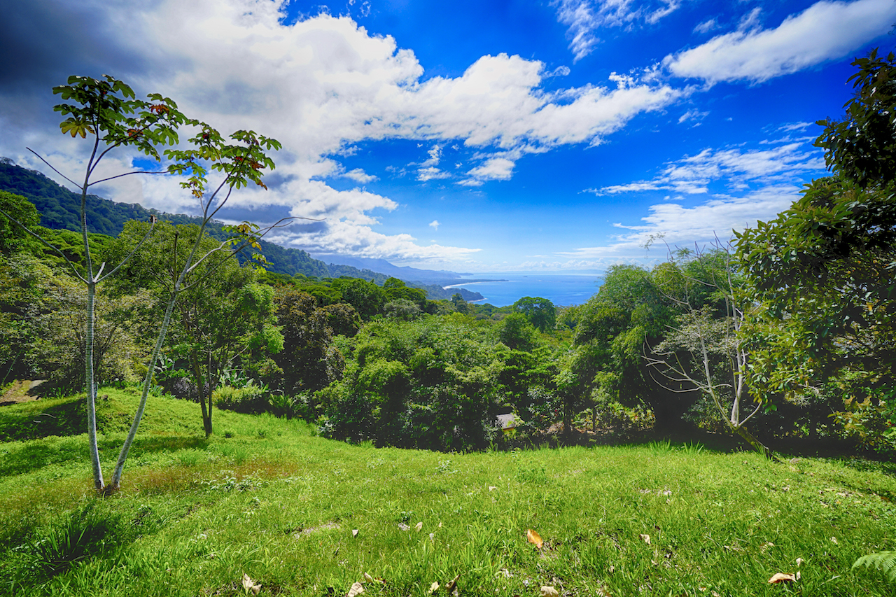 1.74 ACRES - Whales Tale Ocean View Lot Located In The Exclusive Escaleras Mountains!!!