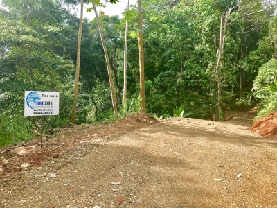 7.3 ACRES - Large Estate Sized Ocean View Property Near Ojochal!!!