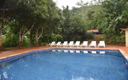 AZUL CONDOS – 1 Bedroom Condos with Ocean View, Shared Pool and Waterfall!!!