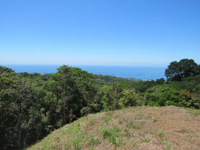 8.8 ACRES - Amazing Sunset Ocean View Property In Escaleras Perfect For Estate, Hotel, Or Condos!!!