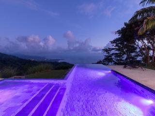16 ACRES - 5 Bedroom Home, 3 Bedroom Home, 2 Pools, Whales Tale Ocean Views!!!