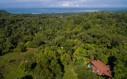 1.2 ACRES – Jungle, Ocean View Private Community Very Close to Whale's Tale Nat. Marine Park &Surf!!