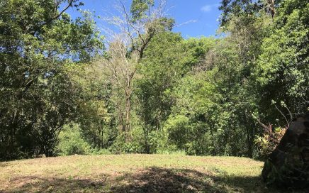 1.3 ACRES – Jungle Lot Gated Community Near the Ocean And Downtown Uvita!