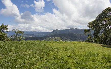 2.5 ACRES – Mountain View Lot In The Costa Verde Development!!!!!